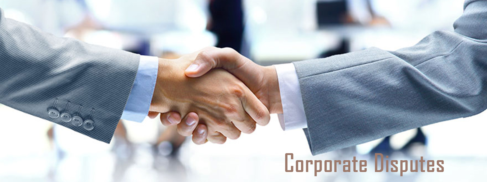 Corporate Matters Lawyers